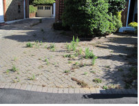 Driveway Before Restoration